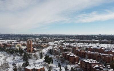 Pozuelo nevado en imágenes